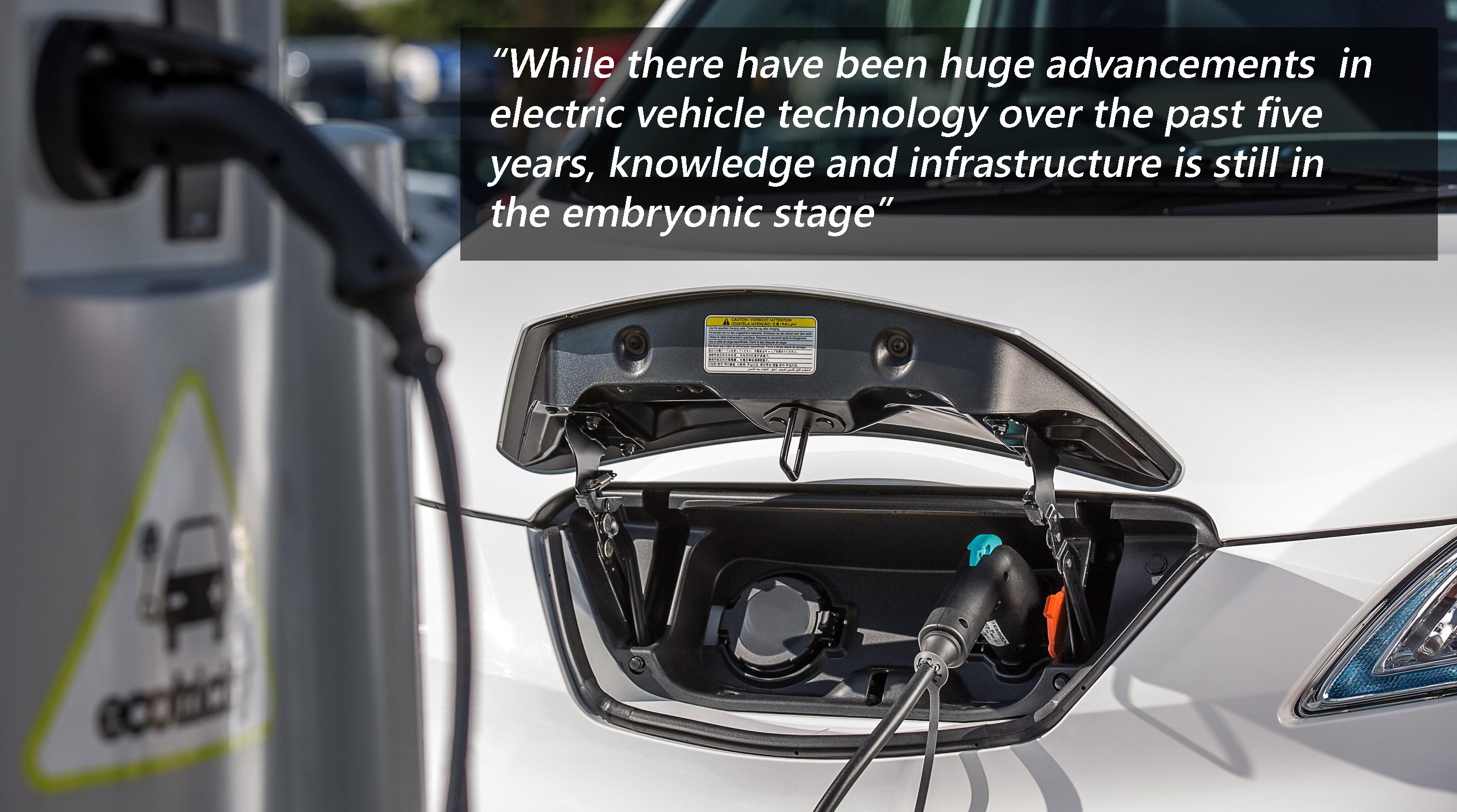 Electric Vehicle Consultants